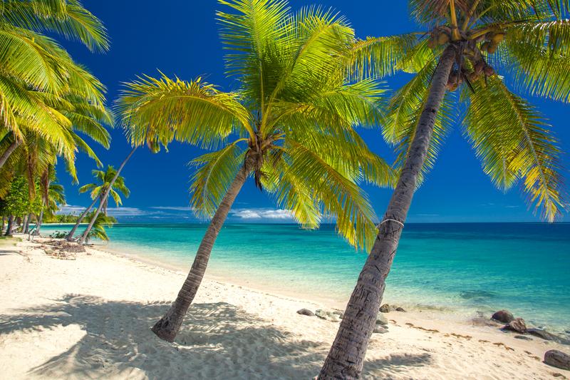 Case Study: Fiji Conference